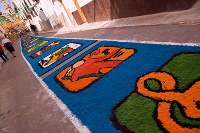 Aguaviva: excursión al Bergantes y las alfombras coloreadas de serrín