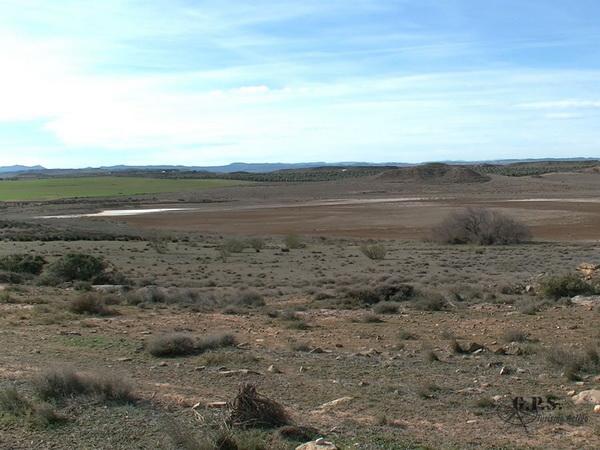 Las Saladas del Bajo Aragon